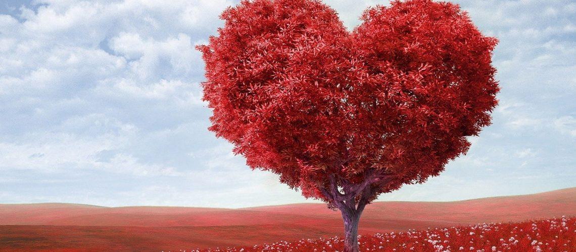 heart-shape-1714807 (1)